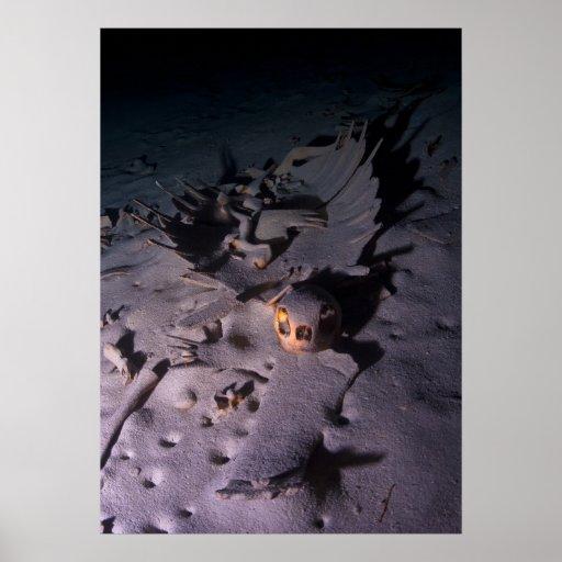 Esqueleto y cráneo de la tortuga en cueva subacuát póster
