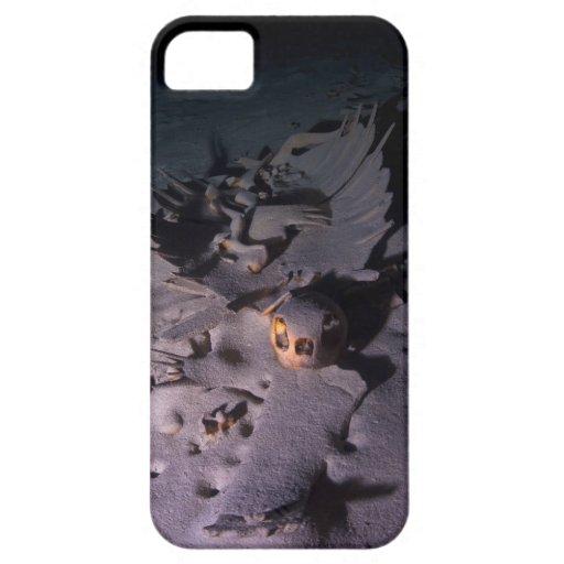 Esqueleto y cráneo de la tortuga subacuáticos en c iPhone 5 cárcasas