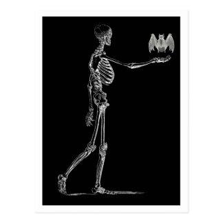 Esqueleto y postal del palo