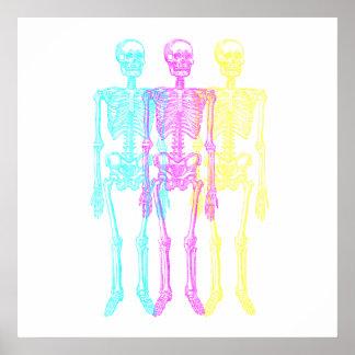 Esqueletos amarillos magentas ciánicos de la impresiones