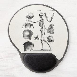Esqueletos antiguos esqueléticos de la anatomía de alfombrillas de ratón con gel