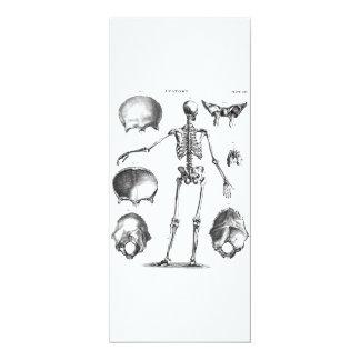 """Esqueletos antiguos esqueléticos de la anatomía de invitación 4"""" x 9.25"""""""
