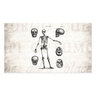 Esqueletos antiguos esqueléticos de la anatomía de tarjetas de visita
