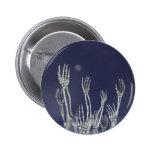 Esqueletos - botón de Halloween Pin