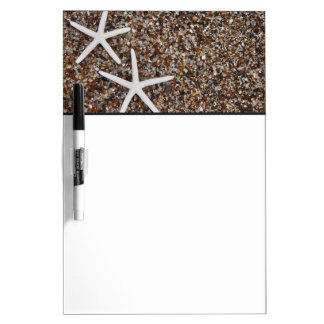 Esqueletos de las estrellas de mar en la playa de  pizarras blancas