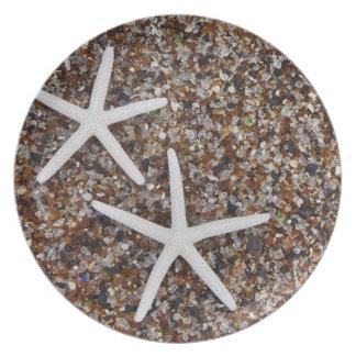 Esqueletos de las estrellas de mar en la playa de  platos