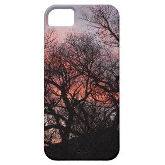 Esqueletos del árbol del baile en la puesta del iPhone 5 funda