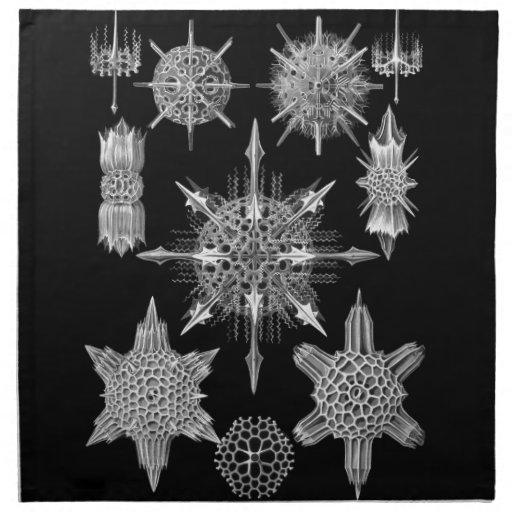 Esqueletos del plancton en blanco y negro servilletas
