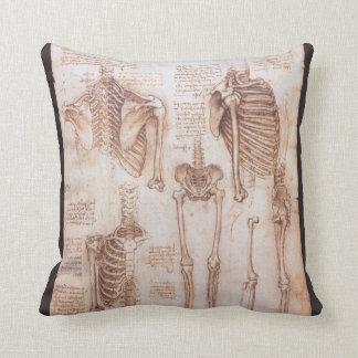 Esqueletos humanos de la anatomía de Leondardo da Cojín