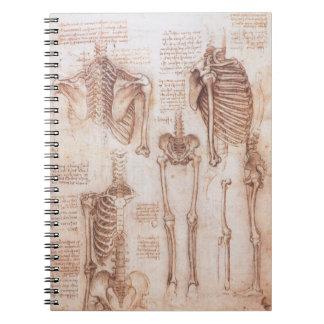 Esqueletos humanos de la anatomía de Leondardo da Libreta Espiral