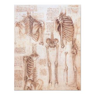 """Esqueletos humanos de la anatomía de Leondardo da Invitación 4.25"""" X 5.5"""""""