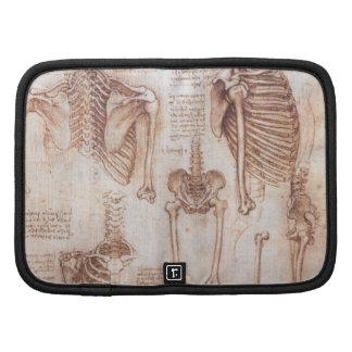 Esqueletos humanos de la anatomía de Leondardo da Planificador