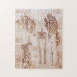 Esqueletos humanos de la anatomía de Leondardo da Puzzles Con Fotos