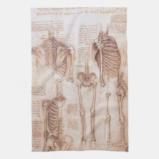 Esqueletos humanos de la anatomía de Leondardo da Toallas De Mano