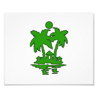 esquema verde invert.png de las casas de isla de l cojinete