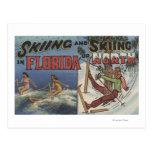 Esquí acuático en la Florida contra la nieve que Tarjeta Postal