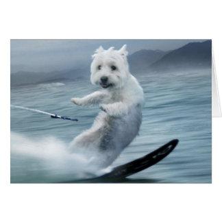 ¡Esquí acuático Westie! Tarjeta De Felicitación