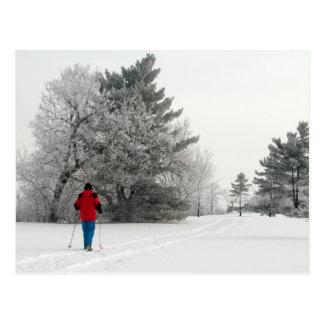 Esquí del campo a través en un día escarchado postales