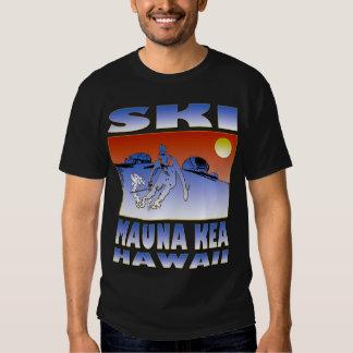 Esquí Mauna Kea Playeras