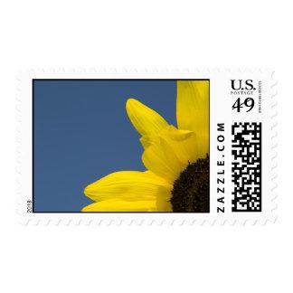 Esquina del girasol timbre postal