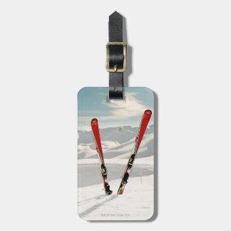 Esquís rojos etiquetas para equipaje