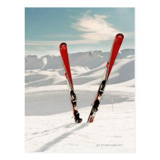 Esquís rojos tarjetas postales