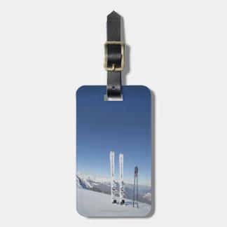 Esquís y esquí postes etiqueta para maleta