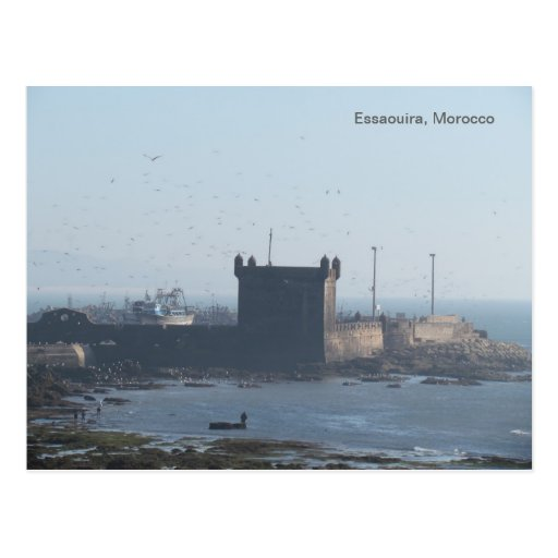 Essaouira Postcard Morocco