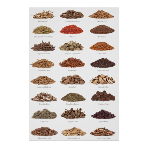 essenstial spices and herbals list all homes poster