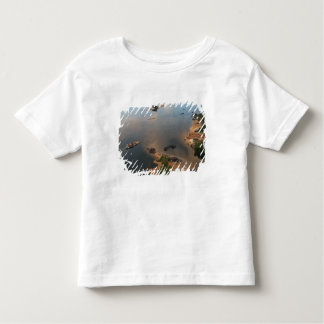 Essequibo River, longest river in Guyana, and 2 Toddler T-shirt