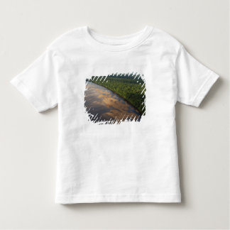 Essequibo River, longest river in Guyana, and 3 Toddler T-shirt