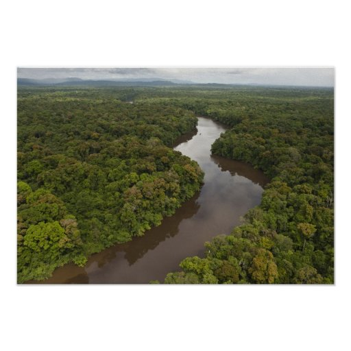 Essequibo River, longest river in Guyana, and 5 Poster