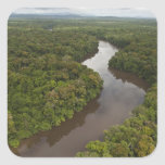 Essequibo River, longest river in Guyana, and 5 Square Sticker