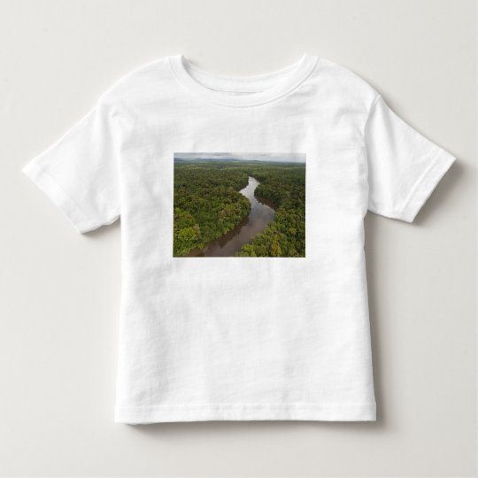 Essequibo River, longest river in Guyana, and 5 Toddler T-shirt
