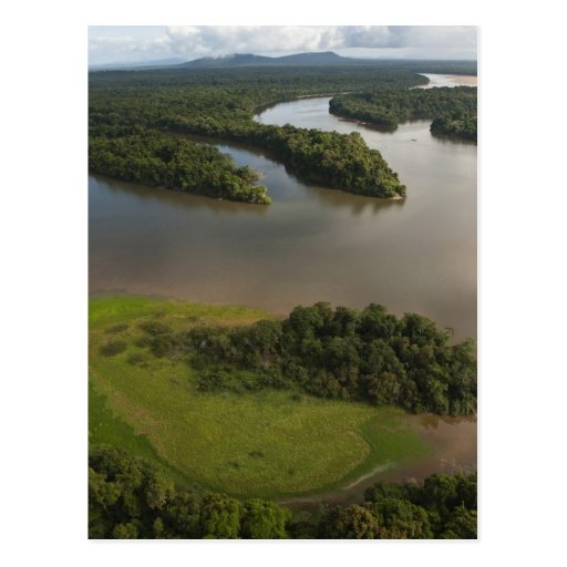 Essequibo River, longest river in Guyana, and Post Card