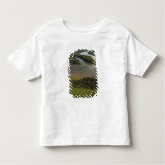 Essequibo River, longest river in Guyana, and Toddler T-shirt
