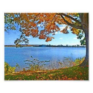 Essex en la impresión de la foto del otoño fotografía