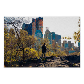 Essex House Central Park View NYC Poster
