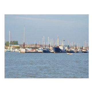 Essex Marina Postcard