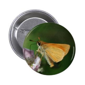 Essex skipper, Thymelicus lineola Pinback Button