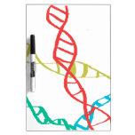Está en mi DNA Pizarras Blancas De Calidad
