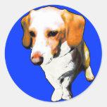 esta longevidad típica del perro de beagles nombró etiqueta