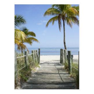 Esta manera al paraíso tarjeta postal
