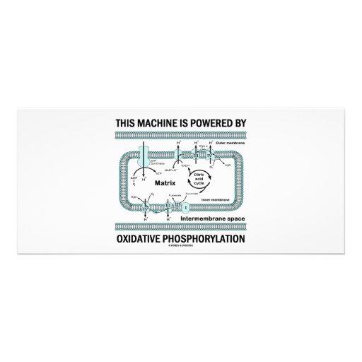 """Esta máquina accionada por la fosforilación oxidat folleto publicitario 4"""" x 9"""""""