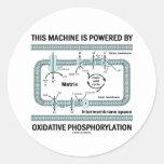 Esta máquina accionada por la fosforilación oxidat pegatina redonda