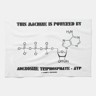Esta máquina es accionada por el trifosfato de ade toallas