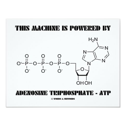 Esta máquina es accionada por el trifosfato de invitación 10,8 x 13,9 cm
