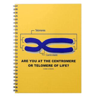 ¿Está usted en el centrómero o Telomere de la vida Cuaderno