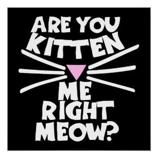 Está usted gatito yo maullido correcto perfect poster