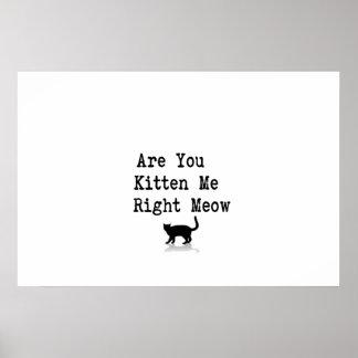 Está usted gatito yo maullido correcto póster